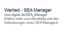 Wanted SEA Manager