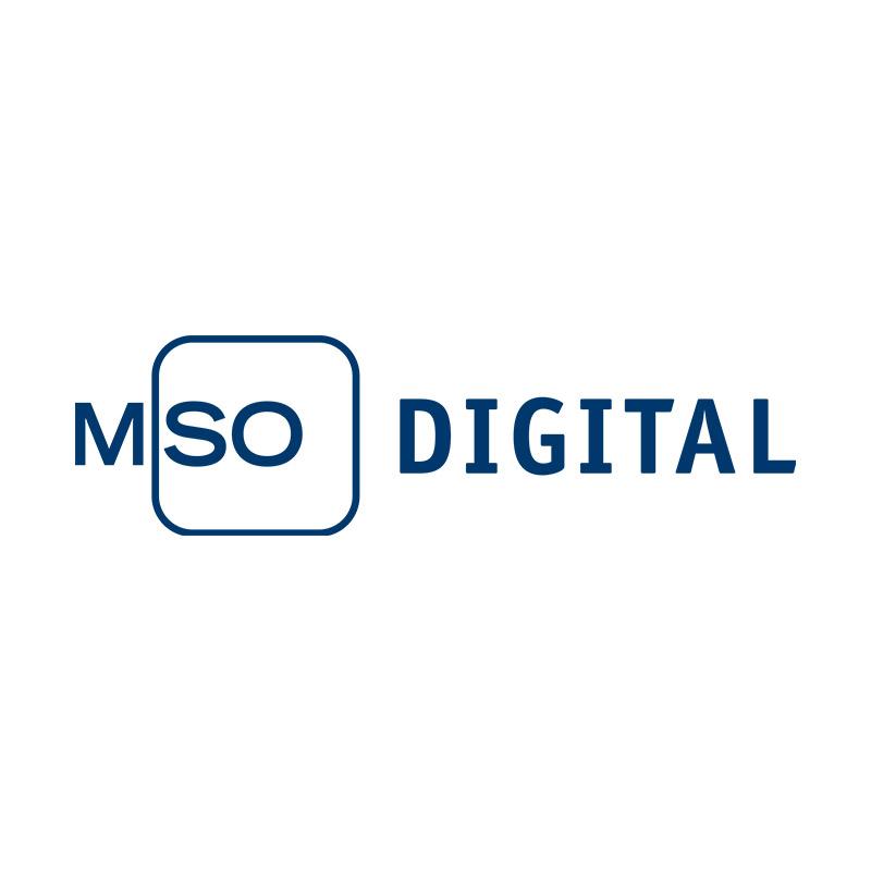 SEO Agentur: 100% nachhaltige Suchmaschinenoptimierung | MSO Digital