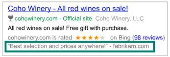 Bewertungserweiterungen verleihen dem Nutzer Vertrauen (Quelle: Bing)