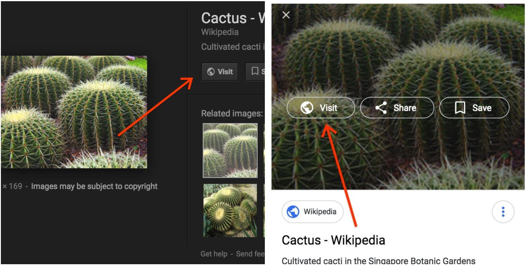 google bildersuche visit button