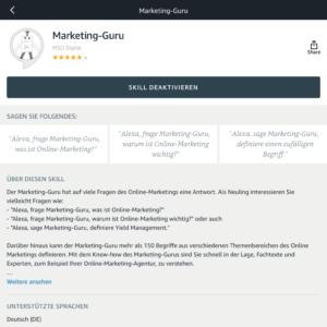 Marketing-Guru