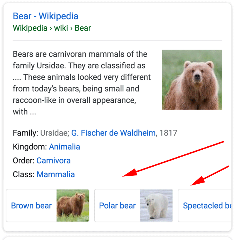google-sub-snippet-images