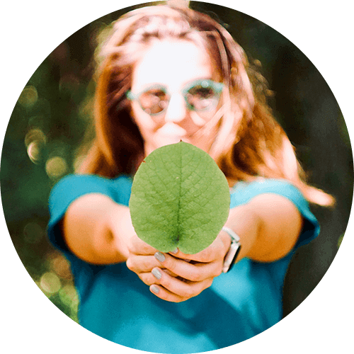 nachhaltigkeit-header-grafik