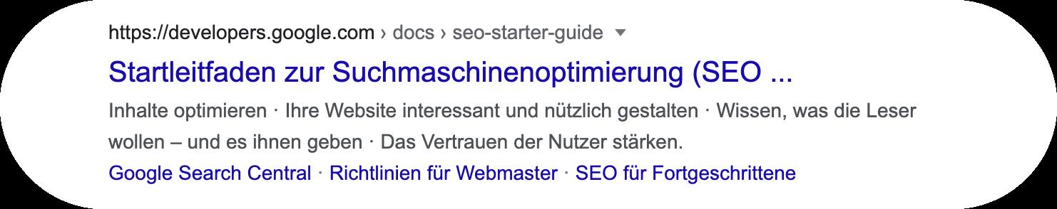 Google Integrationen – Web-Search-Result-Block