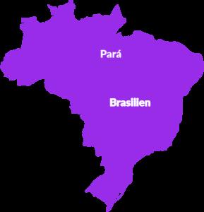 Karte Brasilien, Waldschutzgebiet Pará