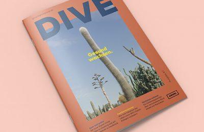 DIVE#7 Grafik Website