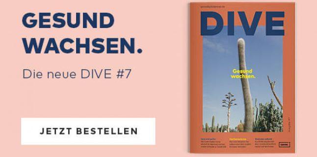 DIVE7 Website Wissen